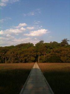 State Park boardwalk on Edisto Island